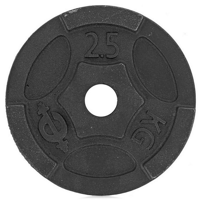 Диск для штанги EURO-CLASSIC 10 кг d-26