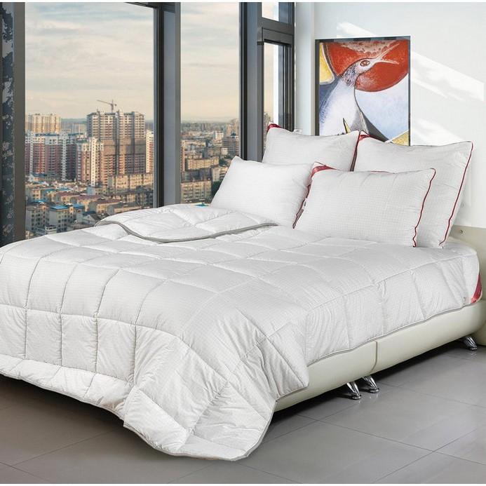 Одеяло Comfort Line 172/205 300 22