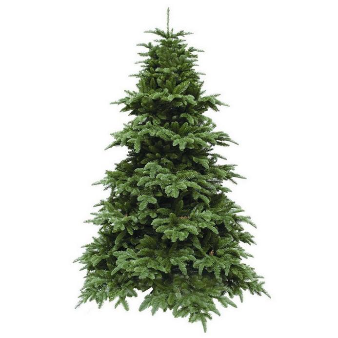 Ель Triumph Tree 73654